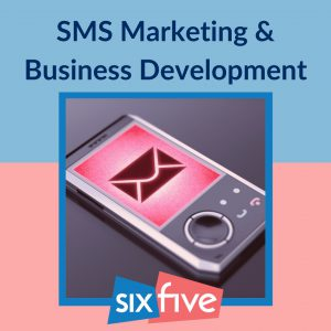 SMS Marketing – Why is it so easy to use for Business Development?